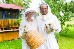 how much do beekeepers earn